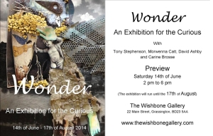 wonder an exhibition poster combi
