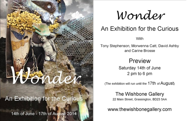Wonder: An Exhibition for the Curious - an invitation