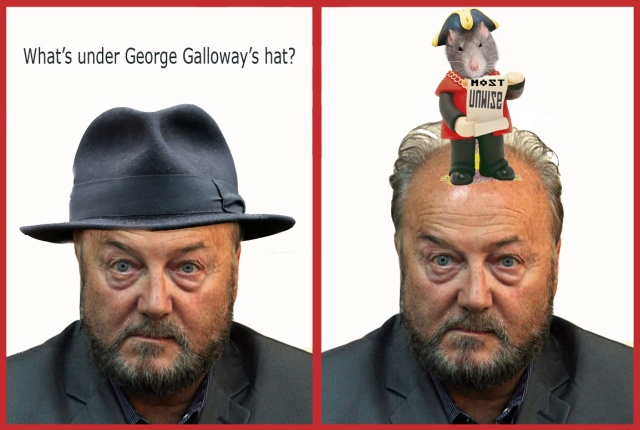 whats under galloways hat mayor