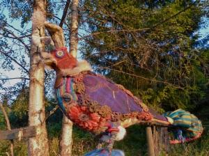 rainbow bird1