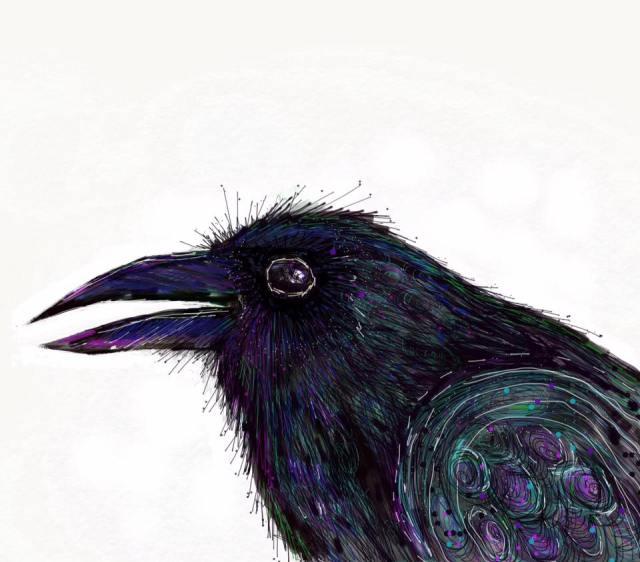 ipad crow