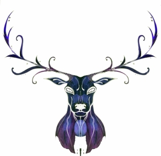 blog-reindeer-symmetry-02